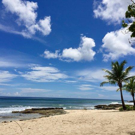 Renaissance St. Croix Carambola Beach Resort & Spa: July 2017