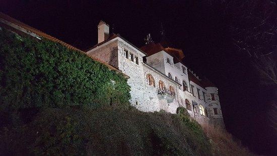 Hnevin Castle: 20180310_192139_large.jpg