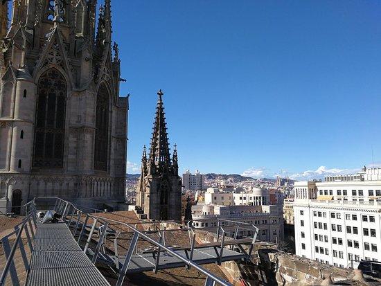 Catedral de Barcelona: IMG_20180312_161619_large.jpg