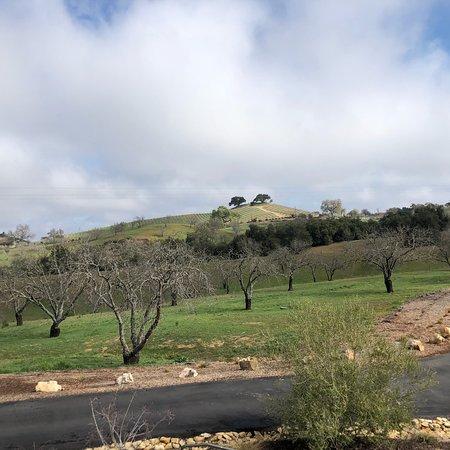 Adelaida Vineyards & Winery: photo2.jpg