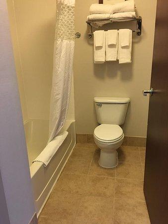 Hampton Inn & Suites Dothan Photo