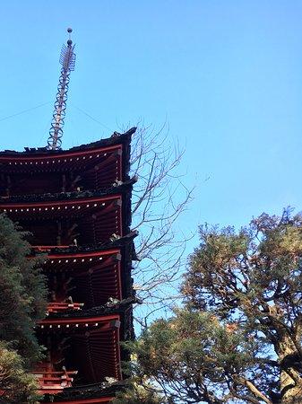 Japanese Tea Garden : Lugar tranquilo