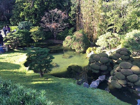 Japanese Tea Garden : Jardines
