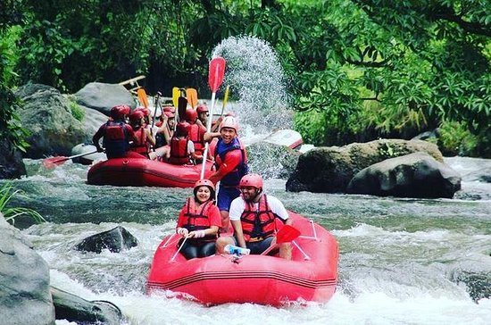 Bali Rafting Including Lunch and...