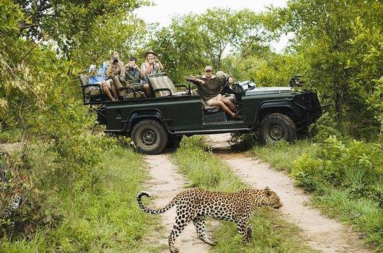 Safari in Wasgamuwa National Park