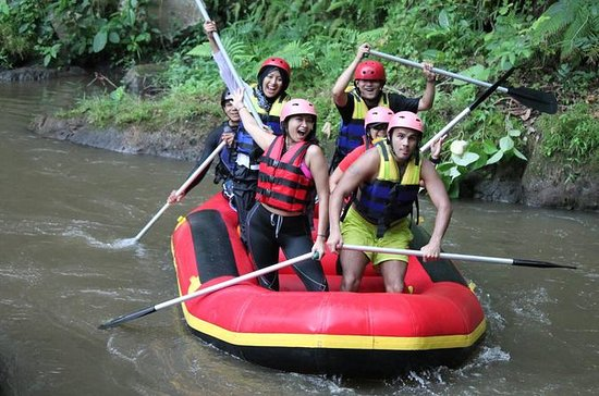 Combination White Water Rafting, Spa...