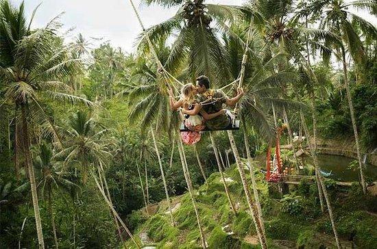 Ubud Swing e Ubud Village Tour