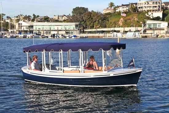 Dolphin Rental Newport beach