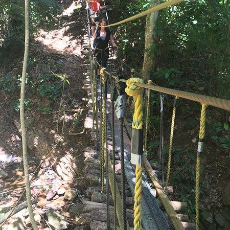 Jungle Top Zipline Adventure: photo8.jpg