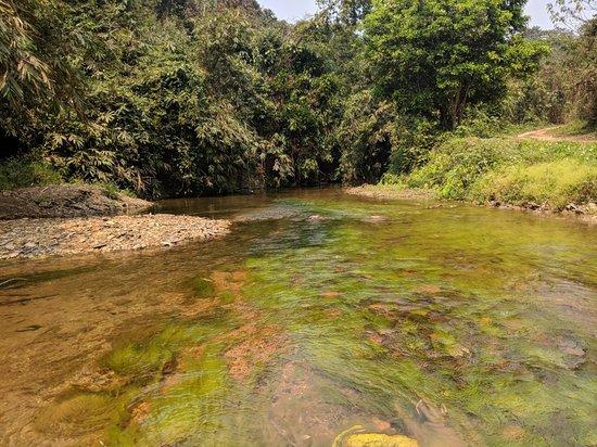 Muang Khua, Laos: IMG_20180307_114405_large.jpg
