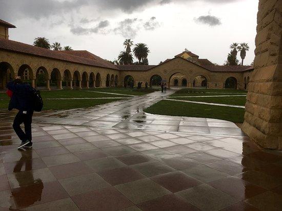 Palo Alto, CA: Inner Yard