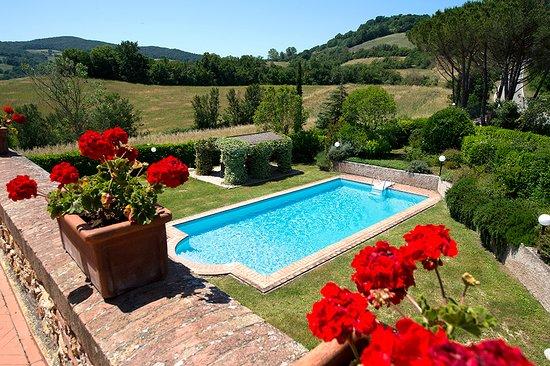 Guardistallo, Italia: Private Swimming Pool Villa Ricrio