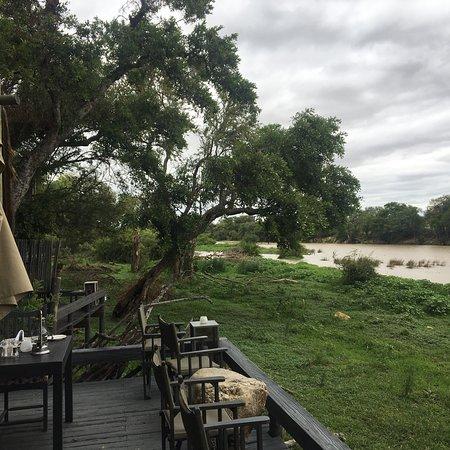 Timbavati Private Nature Reserve, Sudáfrica: photo2.jpg
