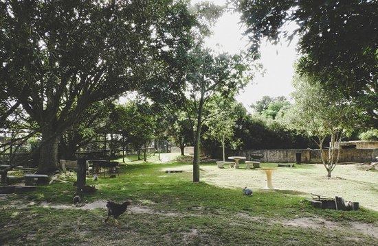 Eastern Cape, Sudáfrica: The grounds