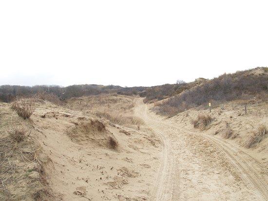 Nature Reserve of Westhoek: Oudste natuurreservaat in Vlaanderen