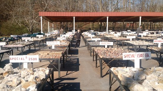 Jessieville, AR: Outdoor area of rock shop