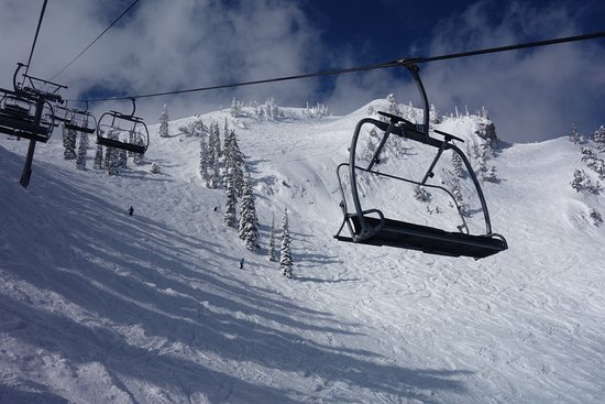 Fernie Alpine Resort : Timber Bowl from the White Pass Chair