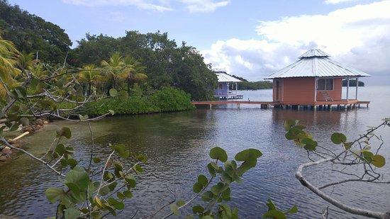 Mango Creek Lodge照片