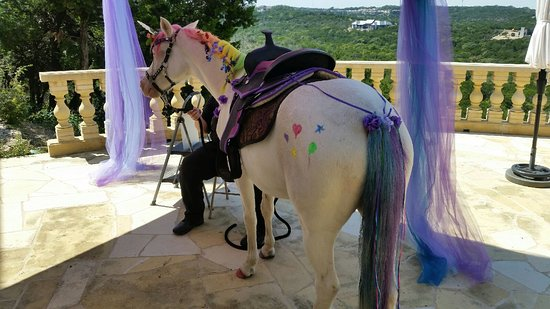 Rockdale, TX: Unicorn Rainbow Mane Tail Twinkle Toes Hearts Stars Ribbons Flowers