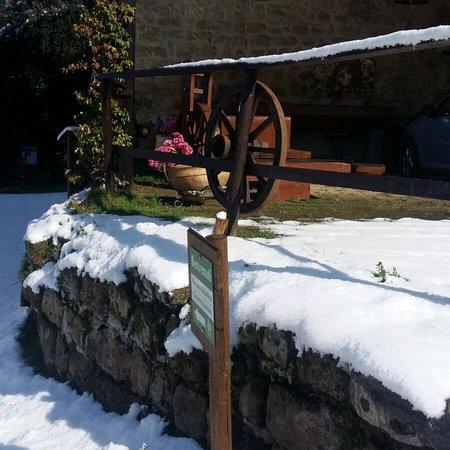 Tenuta Convivium Cuma, sotto una spessa coltre di neve. Meravigliosa!