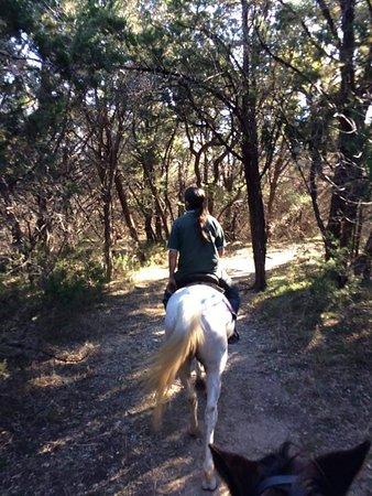 Rockdale, TX: Trail Ride