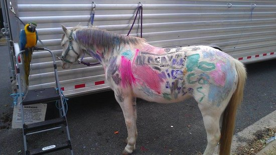 Rockdale, TX: Paint the Pony Game
