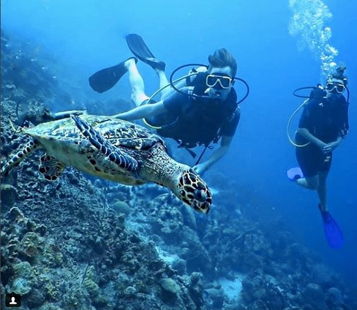 Caribbean Sea Sports Dive Shop: A shot of me and my friend which the dive shop made