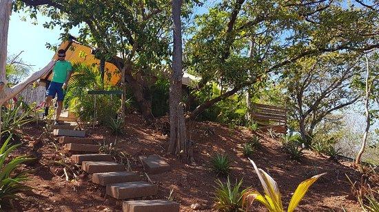 Playa Grande, Costa Rica: 20180304_141747_large.jpg