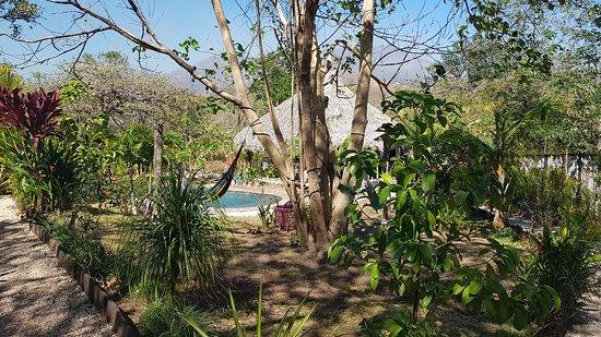 Playa Grande, Costa Rica: 20180304_141813_large.jpg