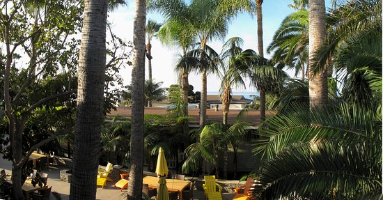 Ocean Palms Beach Resort: View from Apartment 211