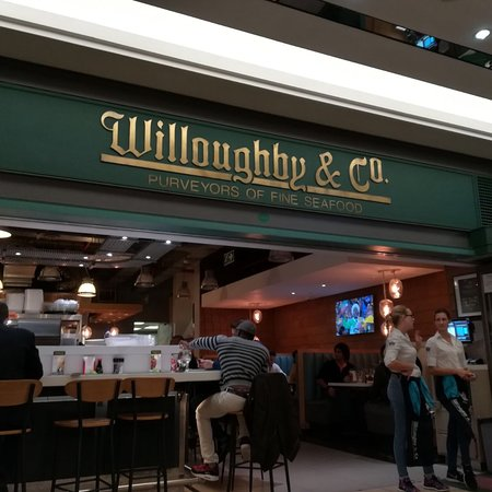 Willoughby & Co