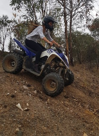Quad Bike King