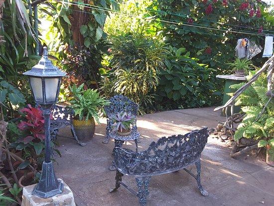 Jardin picture of hostal sol y mar trinidad tripadvisor for Hostal jardin