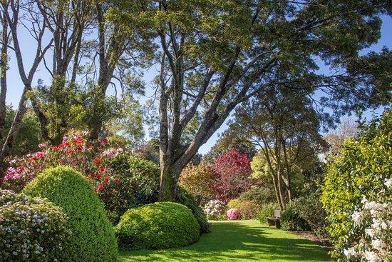 Hollard Gardens