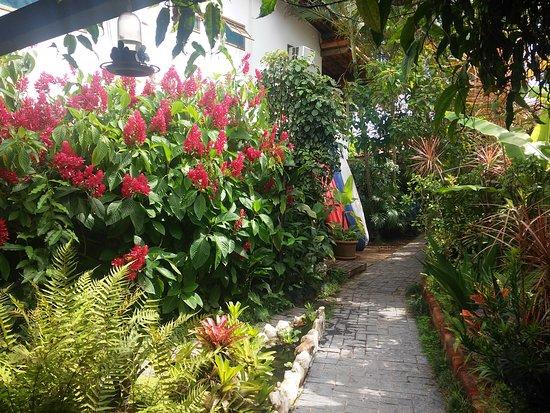 Pousada Tropicana: jardin