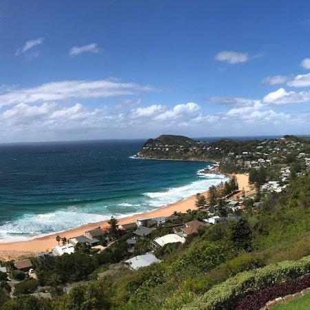 Whale Beach, Australia: photo4.jpg