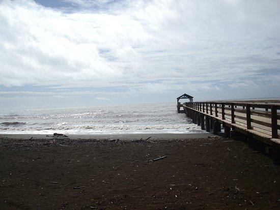 Waimea Pier On Beach