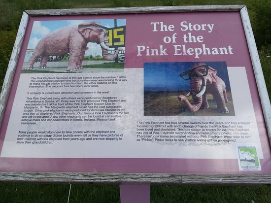 DeForest, WI: Happiness is ELEPHANTS in PINK!