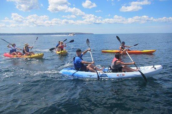 Palma Bay Kayak and Snorkel Tour for...