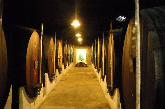 Setúbal Private Full Day Wine Tour with Tasting and Lunch at the Beach