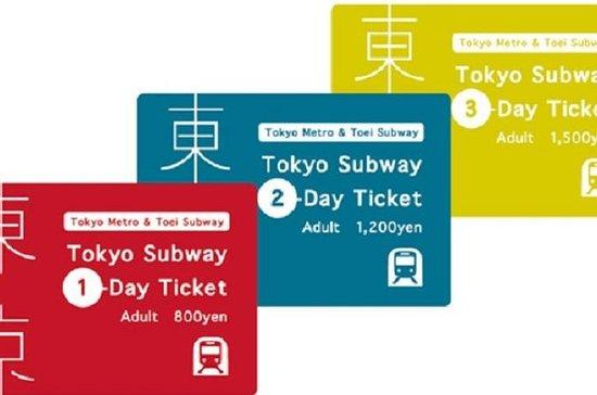 Tokyo MetroPass