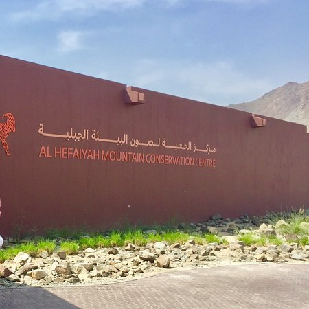 AlHefaiyah Mountain Conservation Centre in  Kalba
