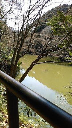 Senoue Pond