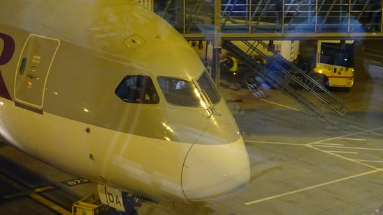 Boeing 787 Dreamliner from Birmingham to Doha - Picture of