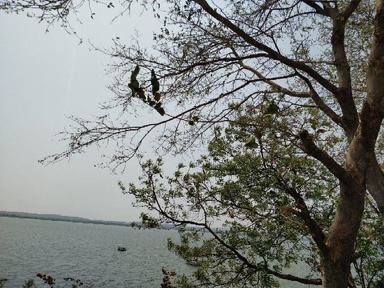 Ramappa Lake照片