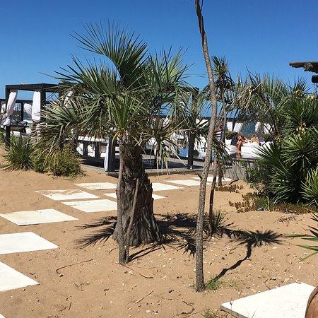 Serena Hotel Punta del Este: Área da piscina