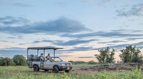 Lake Kariba, Zimbabwe: Game Drive at Changa