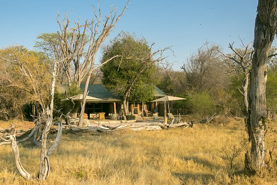 Hwange National Park, Zimbabwe: Toms Little Hide