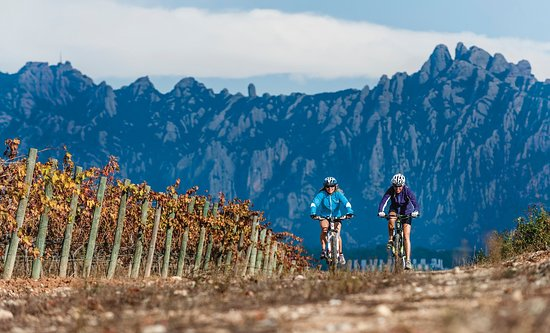 Vilafranca del Penedes, Spain: Bike tour with view on Montserrat