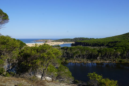 Tathra, Australië: View from the Sandy Creek Loop lookout